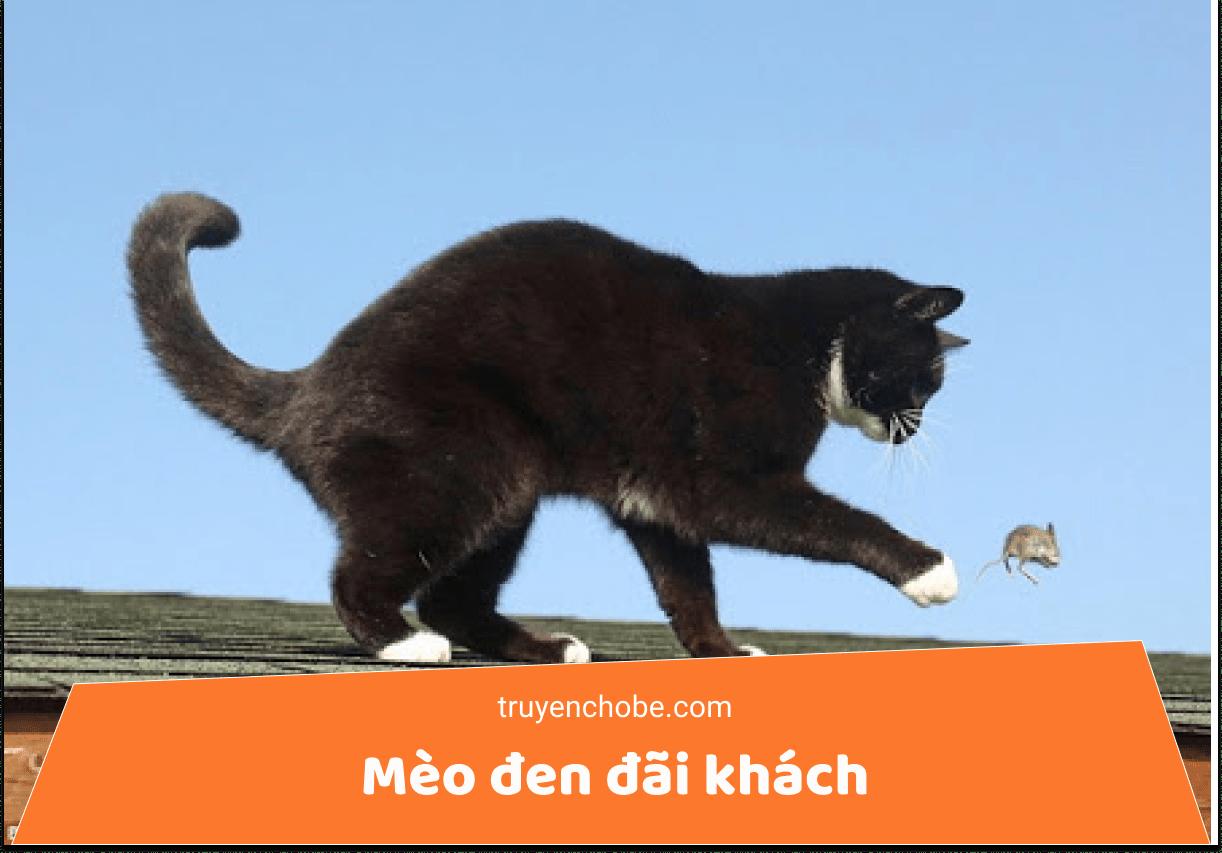 Mèo đen đãi khách