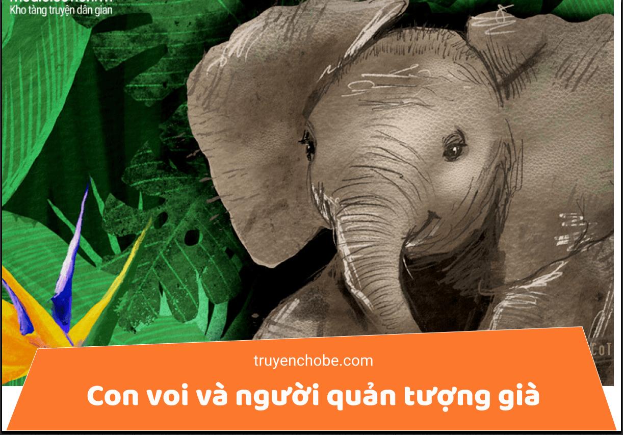 Con voi và người quản tượng già