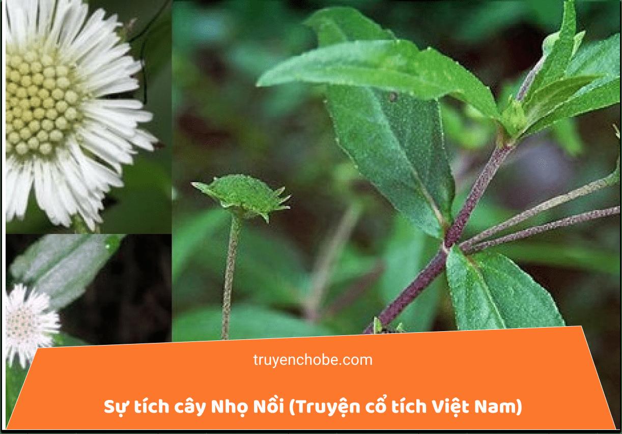 Sự tích cây Nhọ Nồi (Truyện cổ tích Việt Nam)