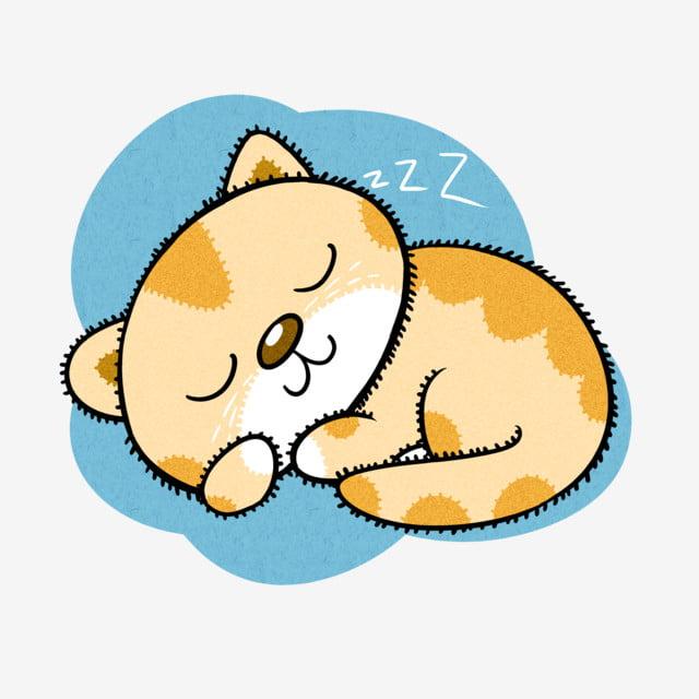 Chú mèo ngủ